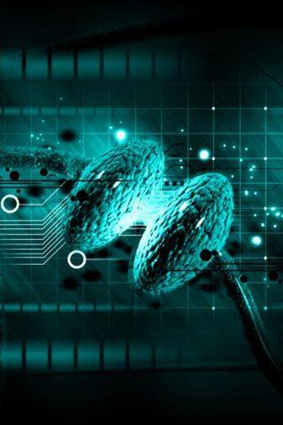 香港服务器遭到木马程序或其他病毒感染-IDC热点